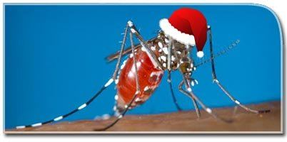 SANTA MOSQUITO - The One Christmas Present You Don't Want.