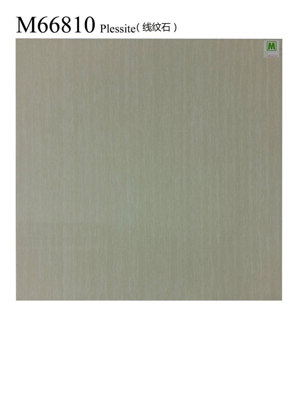 M66810 FLOOR TILES TILE Supplier, Suppliers, Supply, Supplies ~ Itoli Ceramic Sdn Bhd