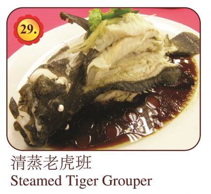 Steamed Tiger Grouper