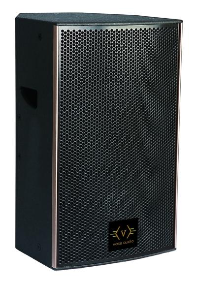 VOSS Audio T-12 PA Speaker