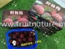 Arbutus Fresh 500gram (Pack) Arbutus Fruits