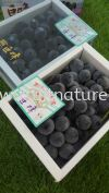 Kyoho Grape Japan (call for enquiry)  Grapes Fruits