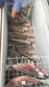 Frozen Fish Frozen Seafood