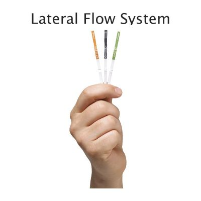 Lateral Flow System