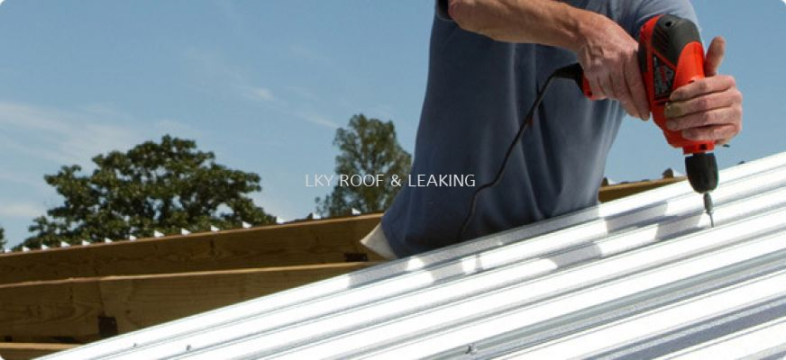 Metal or Zinc Roof Leak Repair Service