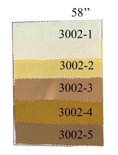 3002-1 to 3002-5
