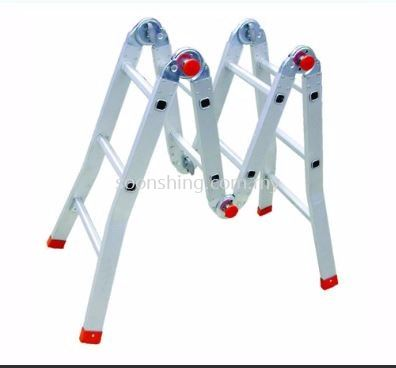 Everlas Multi-Purpose Ladder