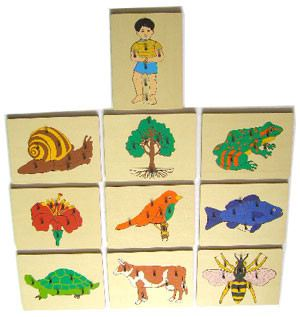 Nature Puzzles (CM140) Puzzles Montessori, Materials, Supplier, Supply  ~ D'Argosy Educational Equipment (M) Sdn Bhd