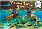 3D2N Pulau Redang Snorkeling Package Diving 潜水