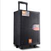 DBL 8''+6.5'' PORTABLE SPEAKER DP-820 DBL Portable Speaker Portable Speaker