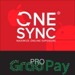 Web Design - ONESYNC Pro 2 Year