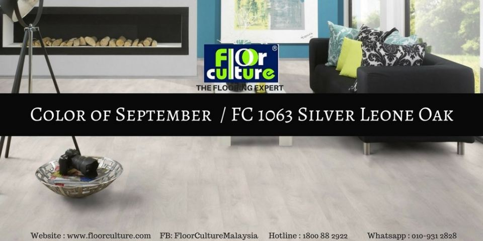COLOR OF THE MONTH, SEPTEMBER 2017 (FC 1063 - SILVER LEONE OAK)