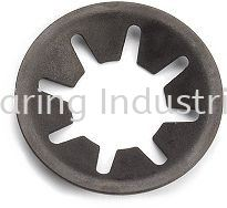 Star Lock Washer /  Push-On Washer Bolt and Nut Supplier, Suppliers, Supply, Supplies  ~ Century Bearing Industrial Sdn Bhd