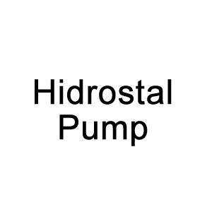 Hidrostal Pump