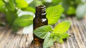 Peppermint Peppermint Essential Oil