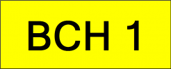 VVIP Number Plate (BCH1) All Plate