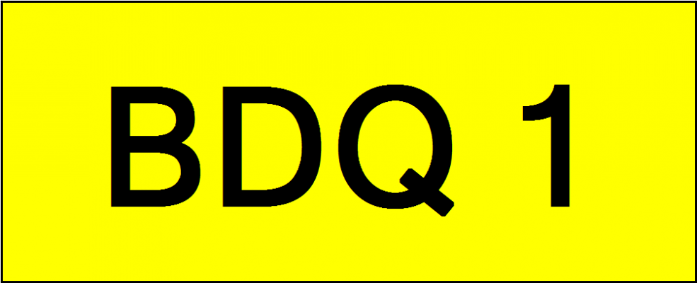 Number Plate BDQ1