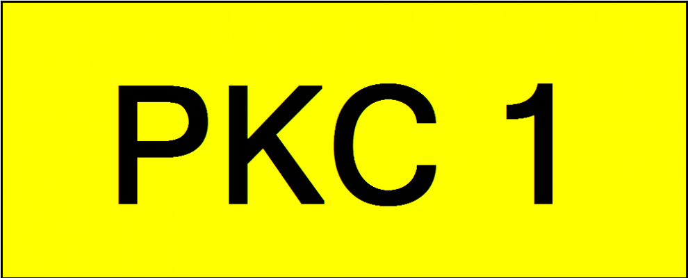 VVIP Number Plate (PKC1)