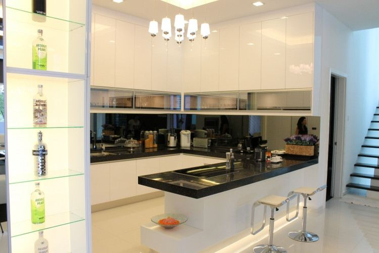 Projects 14 (1 Pictures) Modern Contemporary Kitchen Cabinet