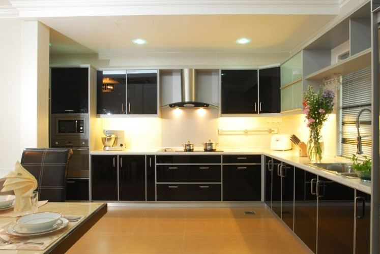 Projects 17 (1 Pictures) Modern Contemporary Kitchen Cabinet