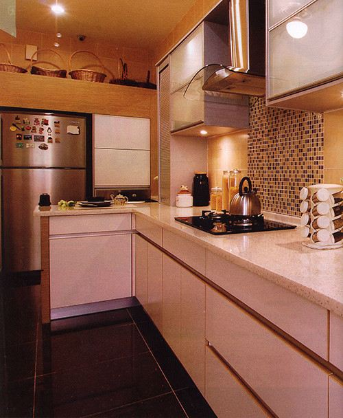 Projects 23 (1 Pictures) Modern Contemporary Kitchen Cabinet