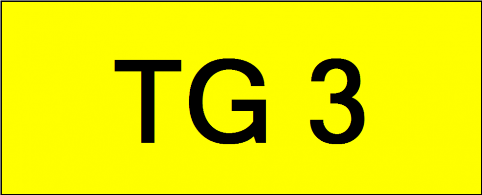 Superb Classic Number Plate (TG3)
