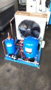 Condensing Compressor Cold Room