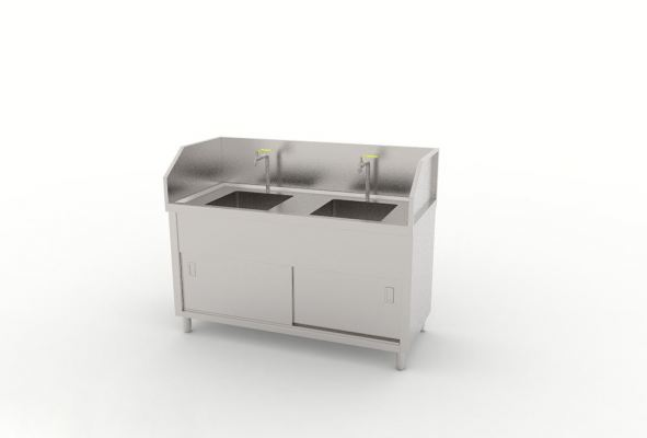Double Bowl Sink With Border Ledge