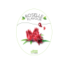Flavour_Roselle Flavour Flavouring