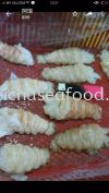 SLIPPER LOBSTER MEAT Others