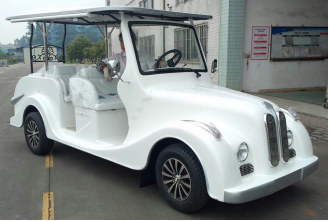 6 Electric Classic Buggy