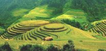Ha Giang Province Vietnam Sightseeing