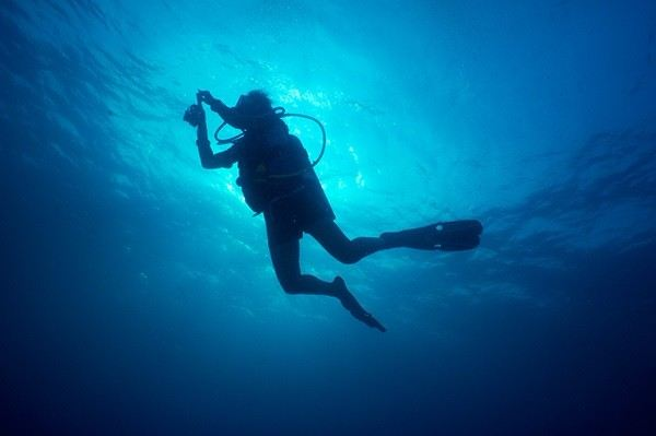 21st PADI Course Director Training Course February 2018 Year 2018 Past Listing