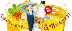 SUNTORY PREMIUM MORNING LEMON TEA 550ML X 24 2 Drink
