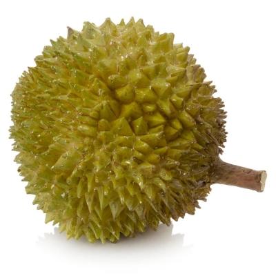 Malaysian MusangKing Durian
