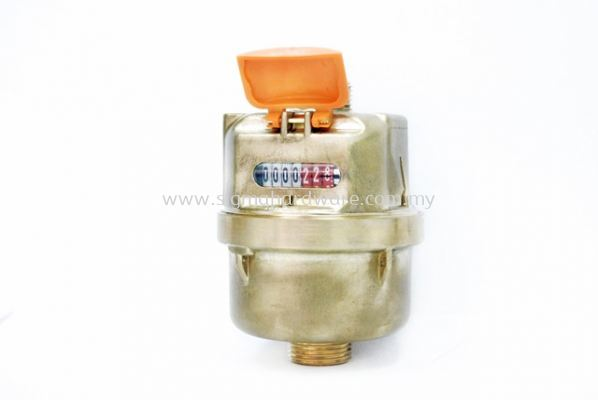 PSM Brass Water Meter