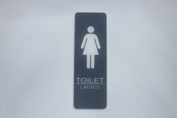 56220 S242C_A.SIGNBOARD-Toilet Female-Grey(Vertivcal)