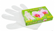 Glove - Orchid Disposable Gloves Others Packaging