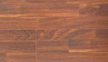 Orange Elm (YM859)