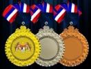 IRM017 METAL HANGING MEDAL Metal Medals Medals Trophy, Medal & Plaque