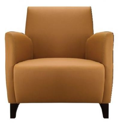 Bardi BD026-1 Single Seater Sofa with Armrest
