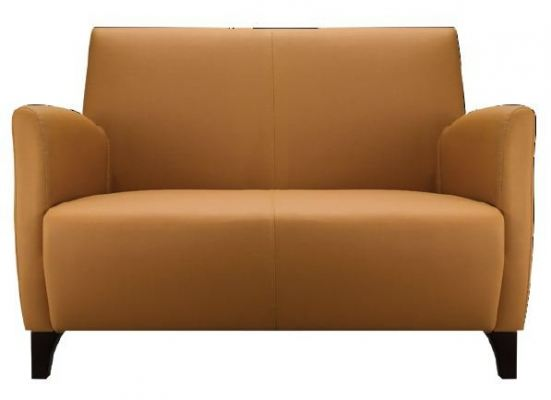 Bardi BD026-2 Two Seater Sofa with Arm