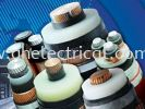 XLPE Insulated Power Cable Leader Cable Cables