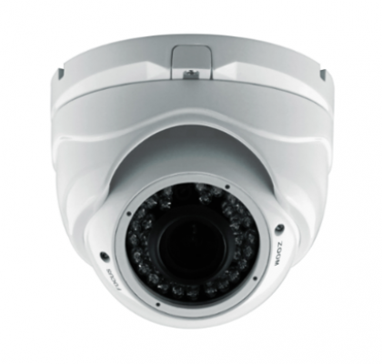 Vandal-proof IR Dome Camera (D1080IR(V))
