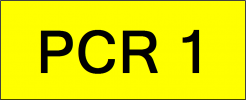 Number Plate PCR1 Super VVIP Plate