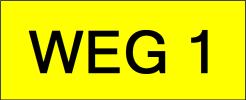 Number Plate WEG1 Super VVIP Plate