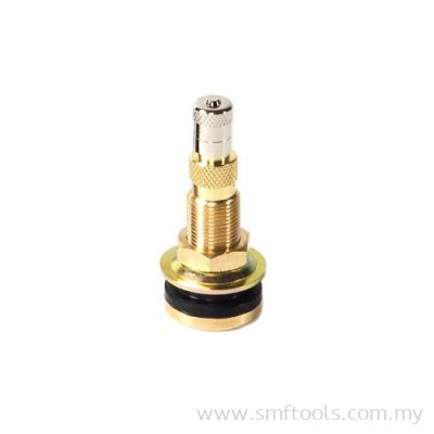 Tubeless Agricultural Valve (Straight) (Air-Liquid)