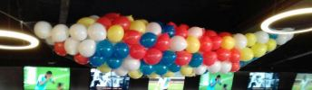Balloon Net 300's- 2040 1301 01 Others Party Decoration