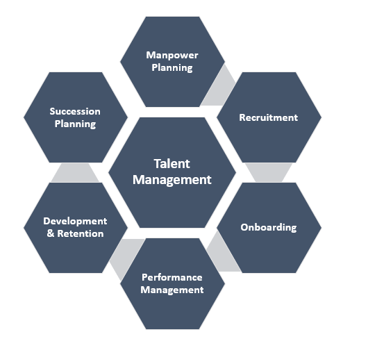 Talent Management System / Software  Talent Management System / Software