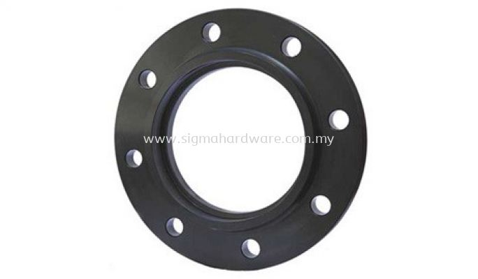Carbon Steel Flange